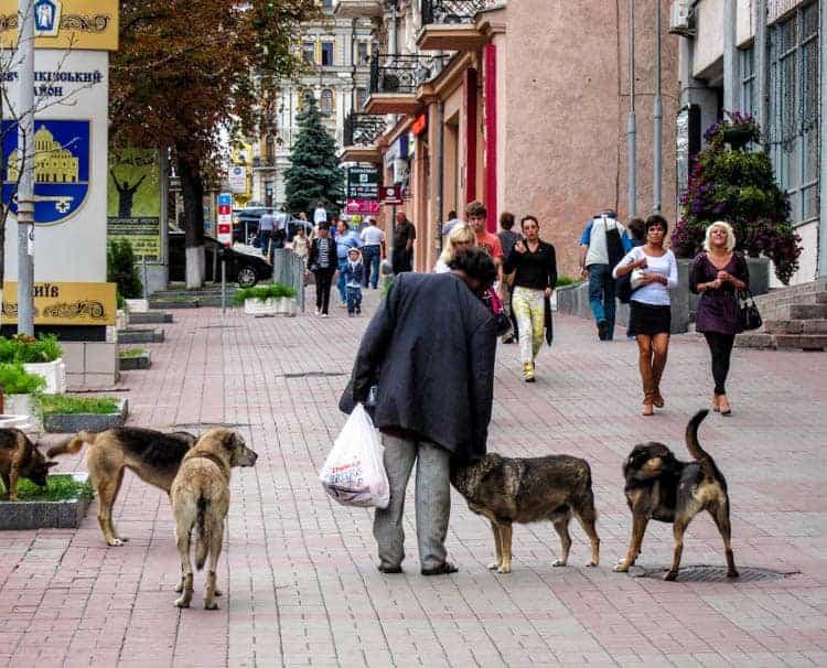 gay studs prostitute odessa ukraine